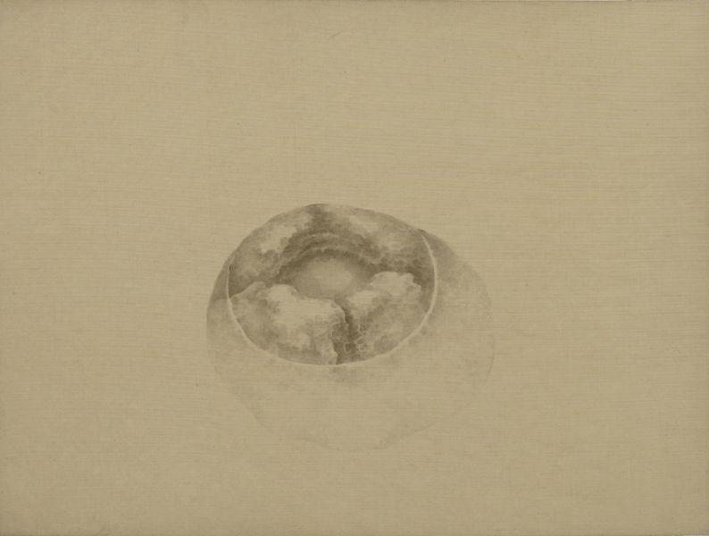 白雨-穿石抄 Pierced Stone