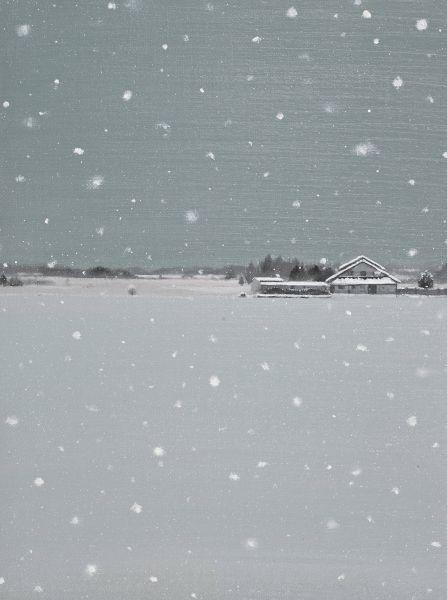傅作新-下雪了 Snowing