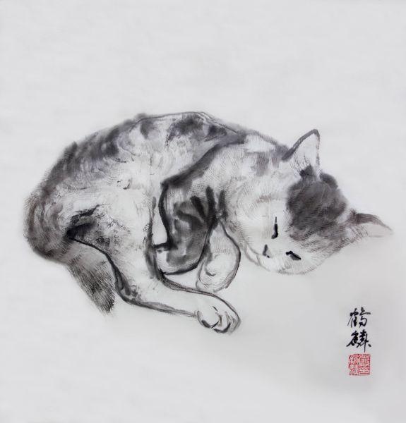嚴鶴麟-睡貓