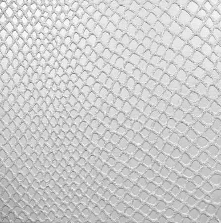 李思慧-白蛇 White Serpent