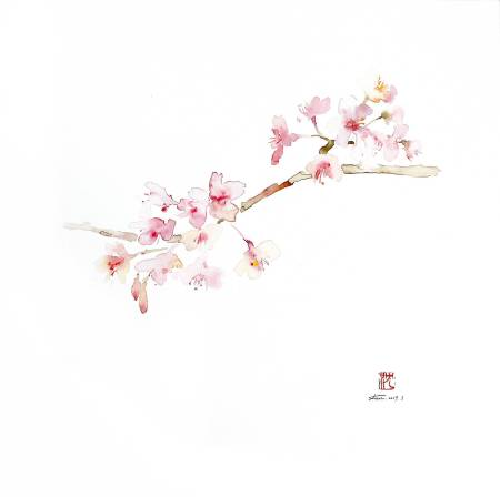 沈鈺華-聖丹尼之春 - 櫻V
