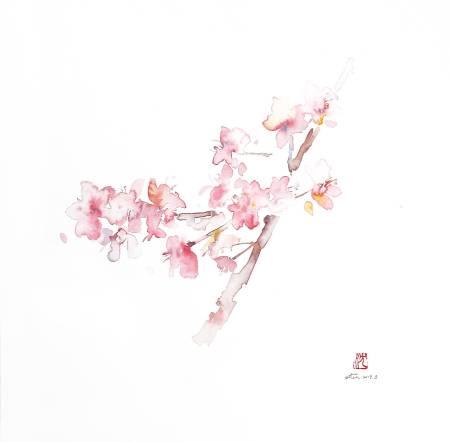 沈鈺華-聖丹尼之春 - 櫻 III