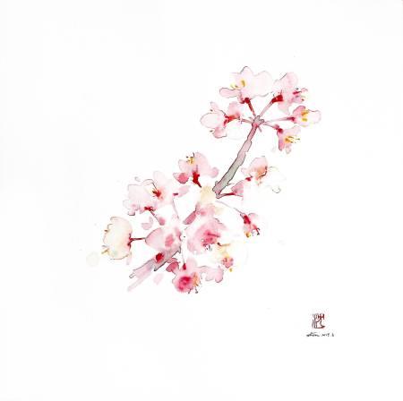 沈鈺華-聖丹尼之春 - 櫻I