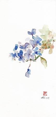 沈鈺華-藍雪花II