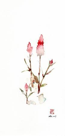 沈鈺華-青葙 II