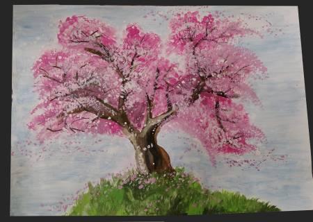 傑克-櫻花樹盛開