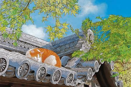 林宗範 -那一年的夏天