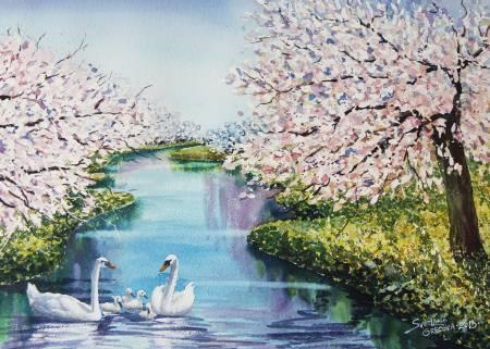 葛拉娜-Peaches blooming