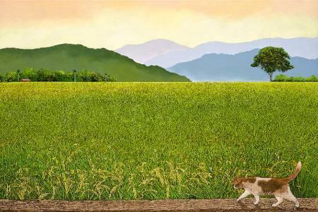 林宗範 -黃昏的故鄉
