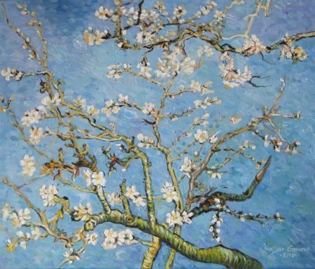 葛拉娜-Blossom, inspired by Van Gogh