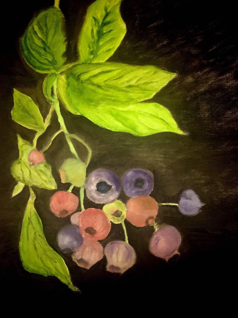 Danting - 盛夏的果實 藍莓