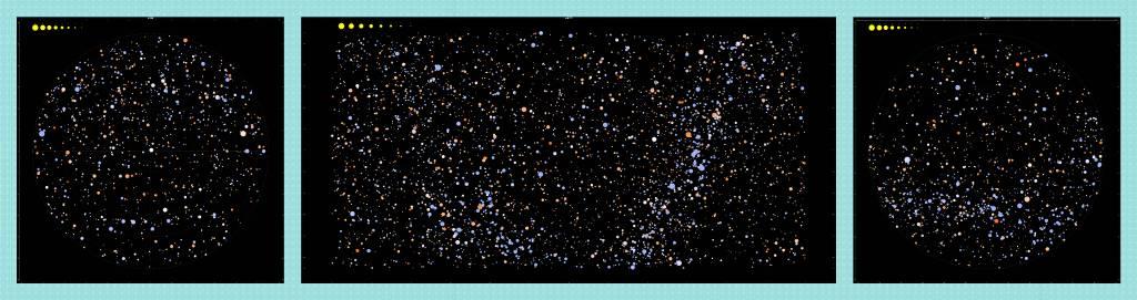 林家齊 - 眾星臉譜 組圖