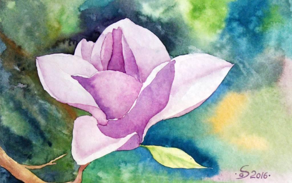 葛拉娜 - Magnolia 2