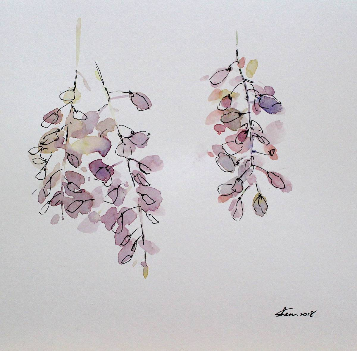 沈鈺華-花肖像- 紫藤II